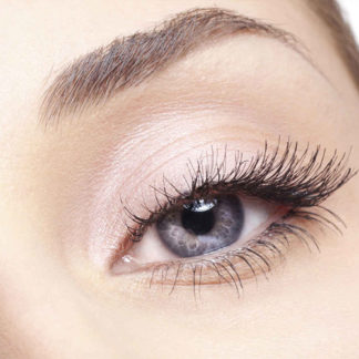 Eye Lash & Eyebrow Care