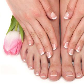 Hands & Feets